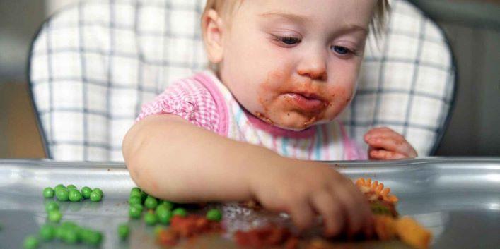 baby led weaning te main 210604 - راهنمای والدین برای اینکه بچه هر ماه می تواند بخورد
